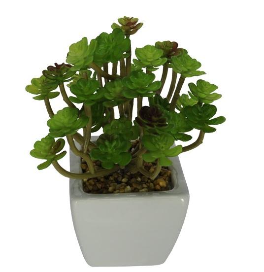 Folhagem Suculenta Echeveria artificial com vaso 16 cm - Verde