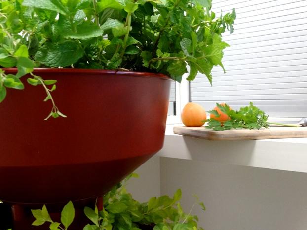 Horta Vertical com rodinhas para apartamento e interiores (autoirrigável) Verde Vida