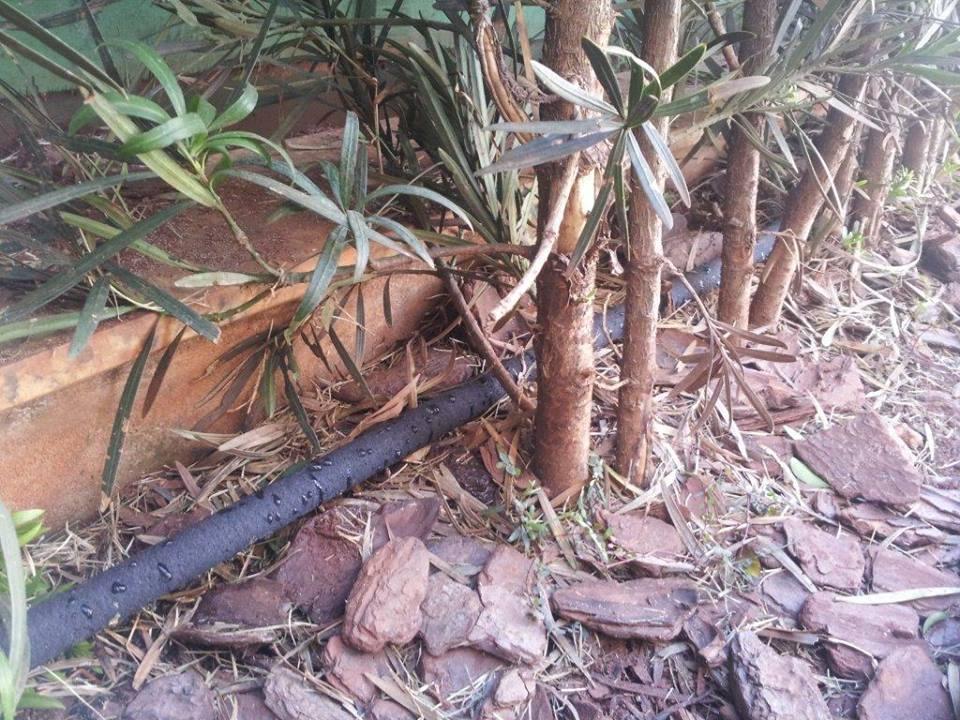 Mangueira irrigação com micro poros transpirante 1/2 15m