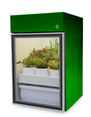 Plantário Estufa doméstica para interiores