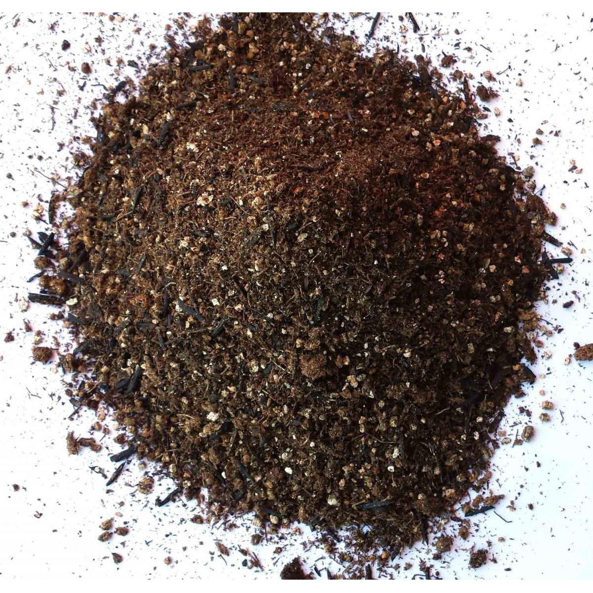 Substrato Carolina quantidade ideal para Vaso Autoirrigável M 300g