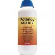 Potenay Gold B12