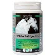 Equistro Mega Base Junior 1L