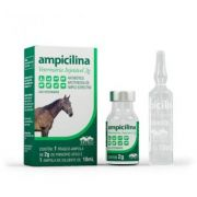 Ampicilina Vetnil Ing. 2gr