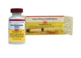 Vacina Pneumabort K+1B 2 ml  - Farmácia do Cavalo
