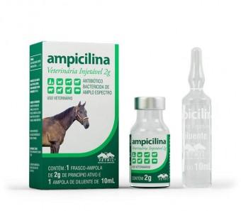 Ampicilina Vetnil Ing. 2gr  - Farmácia do Cavalo