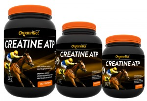 Organnact Creatine ATP 500g  - Farmácia do Cavalo