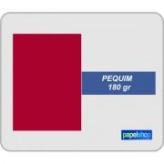 Colorplus Peguim 180 gr 210x297 - 50 Fls.