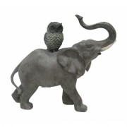 Elefante e Coruja