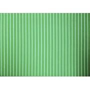 Placa Listrada Branco Fundo Verde 40x60cm