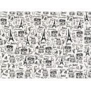 Placa Paris Preto Fundo Branco 40x60cm