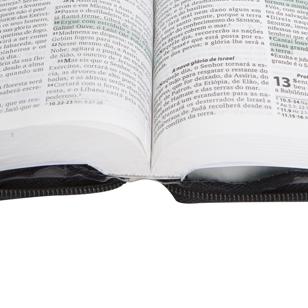 Bíblia Sagrada com Fonte de Bênçãos - Capa Cristal e Zíper - RA040LMFBZ  - Distribuidora EBD