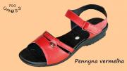 Pennyna