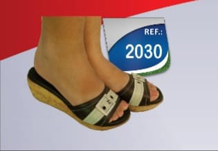2030  - MagnePhoton