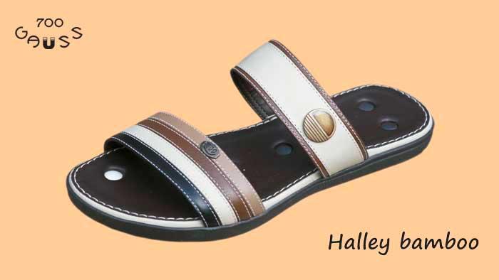 Halley  - MagnePhoton