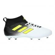 Chuteira Adidas Ace 17.3 FG