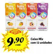 Luminus Life sabores variados 1L (12 unidades)