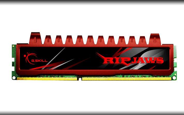 Memória Ripjaws 4GB 1333MHz DDR3 F3-10666CL9S-4GBRL - G.SKill