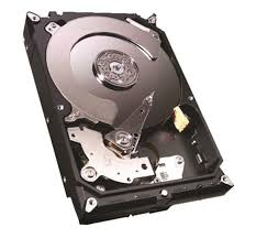 Hard Disk 1TB Sata III 3,5 64MB ST1000VM002 Series Video - Seagate
