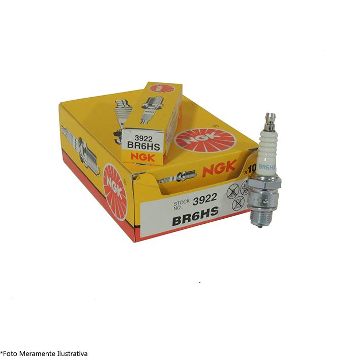 Vela BR6HS para Motor de Popa Evinrude (Caixa c/ 10 unidades)  - Radical Peças - Peças para Jet Ski