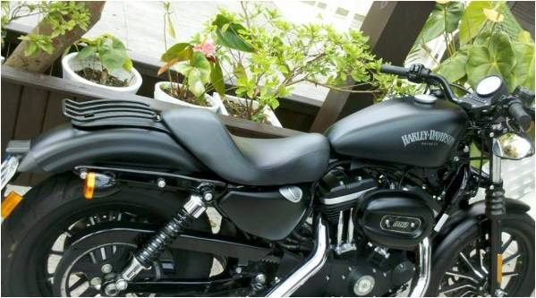 Bagageiro Harley Davidson 883 Preto Fosco  - T & T Soluções
