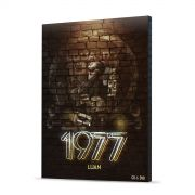 Pr�-Venda Combo Premium Luan Santana 1977 Kit de CD & DVD + Almofada + 2 P�steres + Adesivo e Bloco GR�TIS