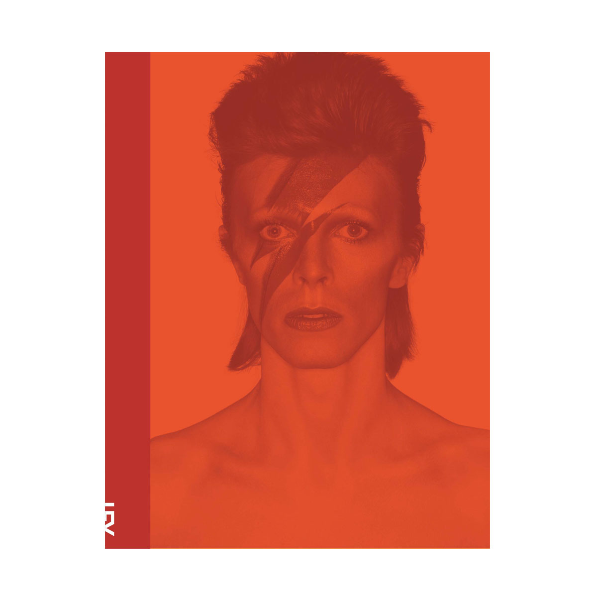 Livro David Bowie + Camiseta