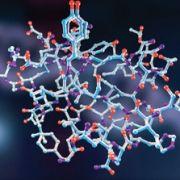 Aspectos bioquímicos e nutrição (Newton Nunes)