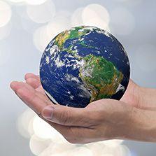 Crimes Ambientais (Christiany Pegorari Conte)  - Cursos distância e aulas online Instituto Phorte Educação.