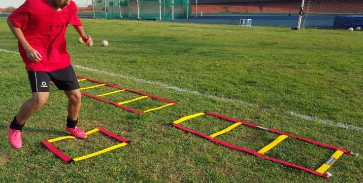 ESCADA DE AGILIDADE ATÉ 11 PASSADAS DESMONTÁVEIS  - Actualsports  Equipamentos Esportivos