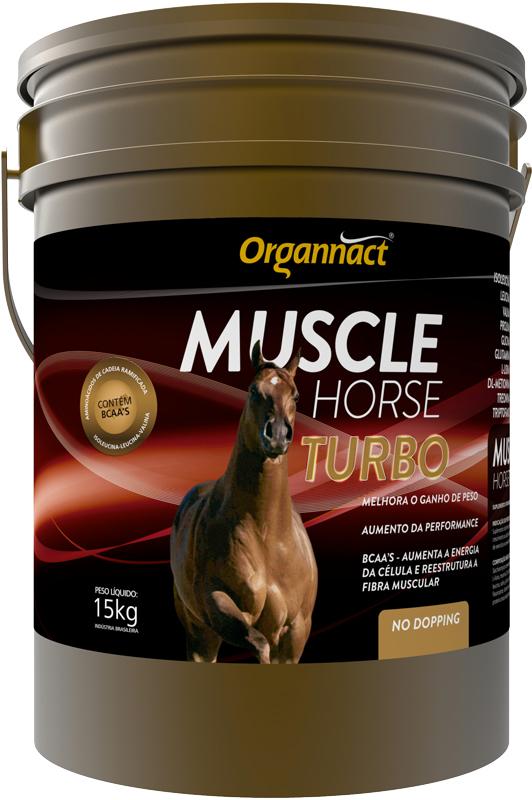 MUSCLE HORSE TURBO ORGANNACT
