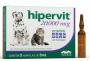 HIPERVIT 20000 MCG VETNIL