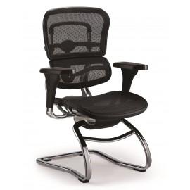 Cadeira Raynor Eurotech ErgoChair Interlocutor Ergonômica Anatômica em Tela Mesh Preta - Moln Design Furniture