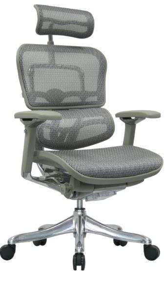 Cadeira Raynor Eurotech ErgoChair V2 2016 Plus Luxury Giratoria Ergonomica Diretor Presidente em Tela Mesh Prata - Moln Design Furniture