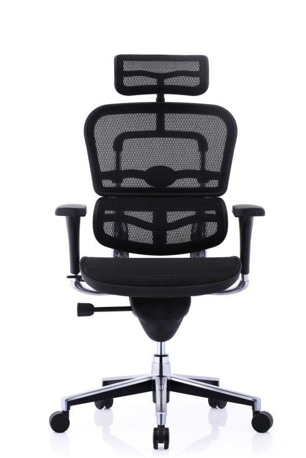 Cadeira Raynor Eurotech Ergochair V2 2016 Plus Elite Giratoria Ergonomica Diretor Presidente em Tela Mesh Preta - Moln Design Furniture