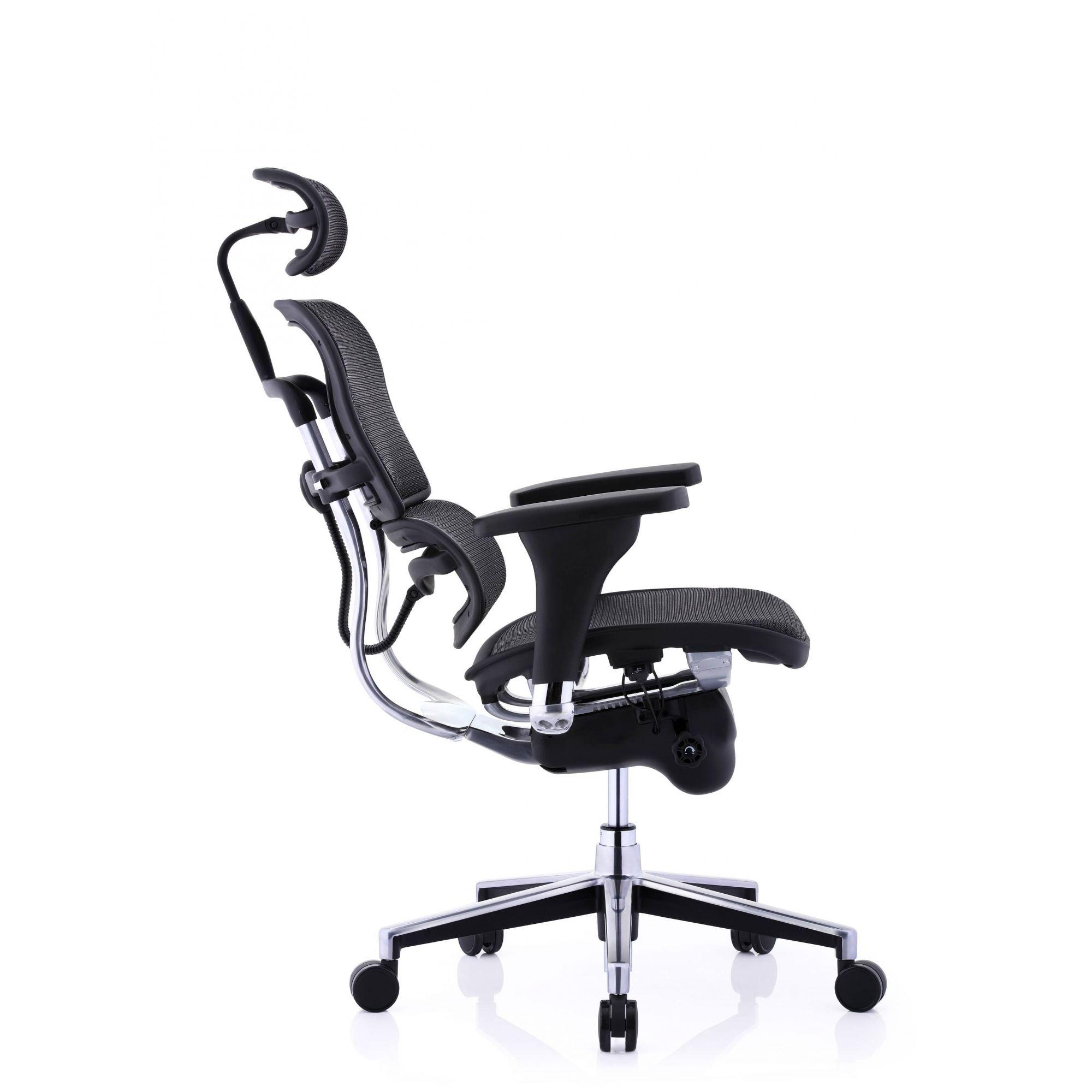 Cadeira Raynor Eurotech Ergochair V2 2020 Plus Elite Giratoria Ergonomica Diretor Presidente em Tela Mesh Preta - Moln Design Furniture