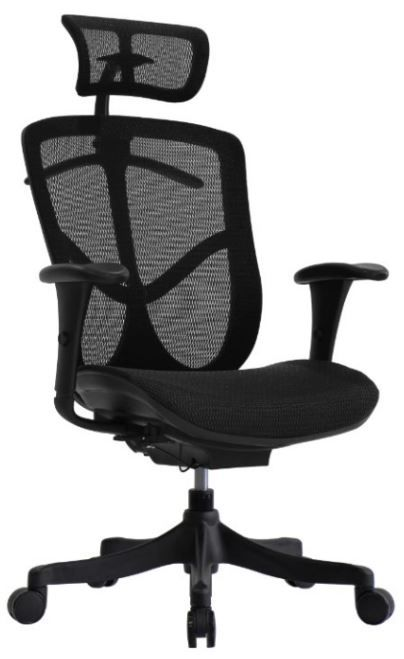 Cadeira Raynor Eurotech Ergochair V2 Brant Classic em Tela Mesh Preta - Moln Design Furniture