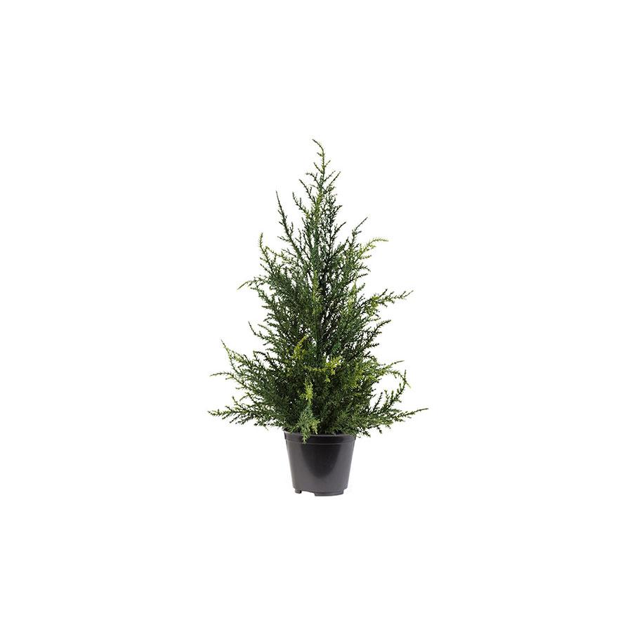 Vaso Pinheiro Mini Árvore Milena 41Cm