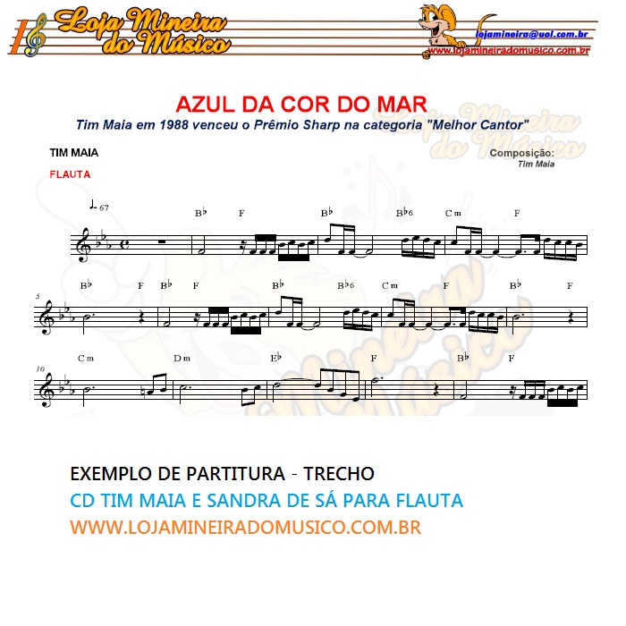 VIOLINO ou FLAUTA Tim Maia e Sandra de Sá Partituras e Playbacks MP3 e Midi em CD