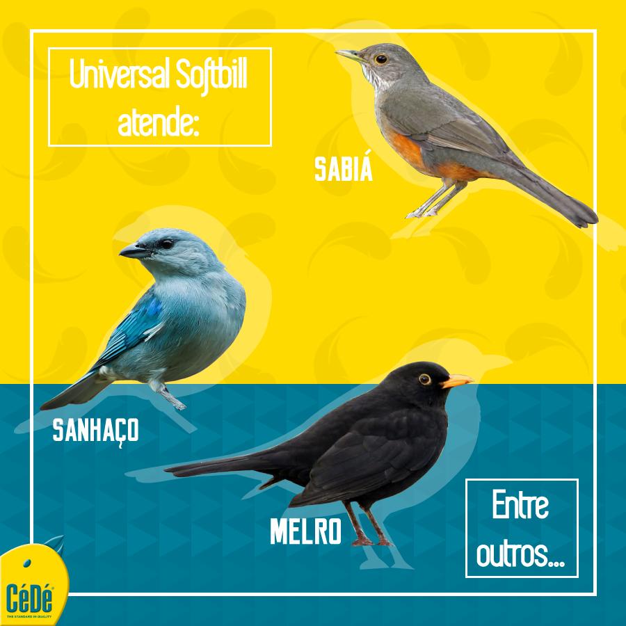 Alimento universal Kg (Sabiá, Melro, Pássaro Preto)  - CéDé Brasil