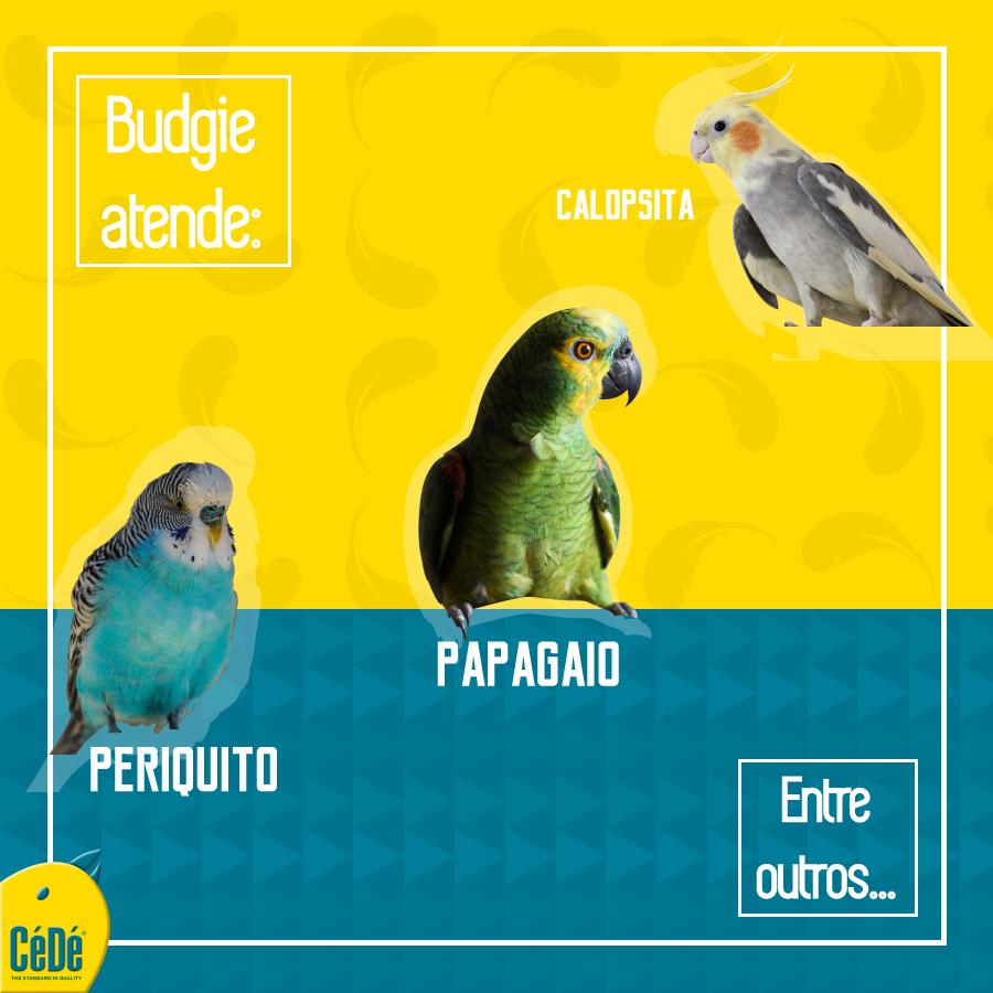 Eggfood Calopsitas e Budgies  - CéDé Brasil