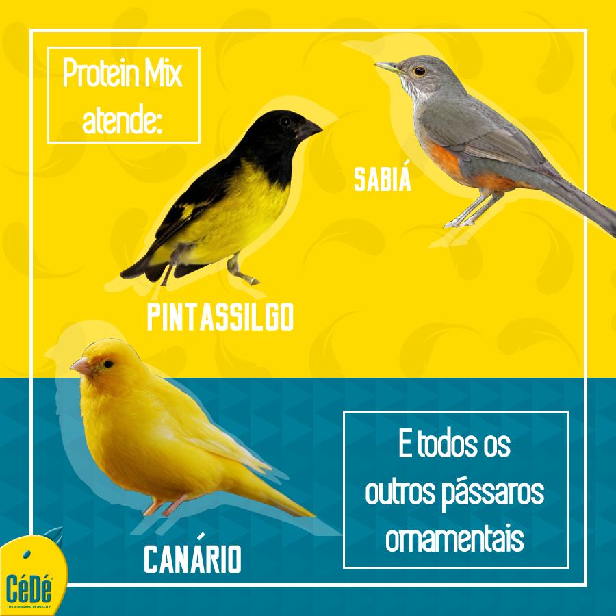 PROTEIN MIX - Mistura de proteínas-Kg  - CéDé Brasil