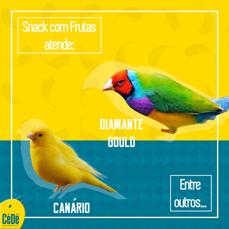 Snack com frutas para Pássaros Exóticos 150g / Cx  - CéDé Brasil