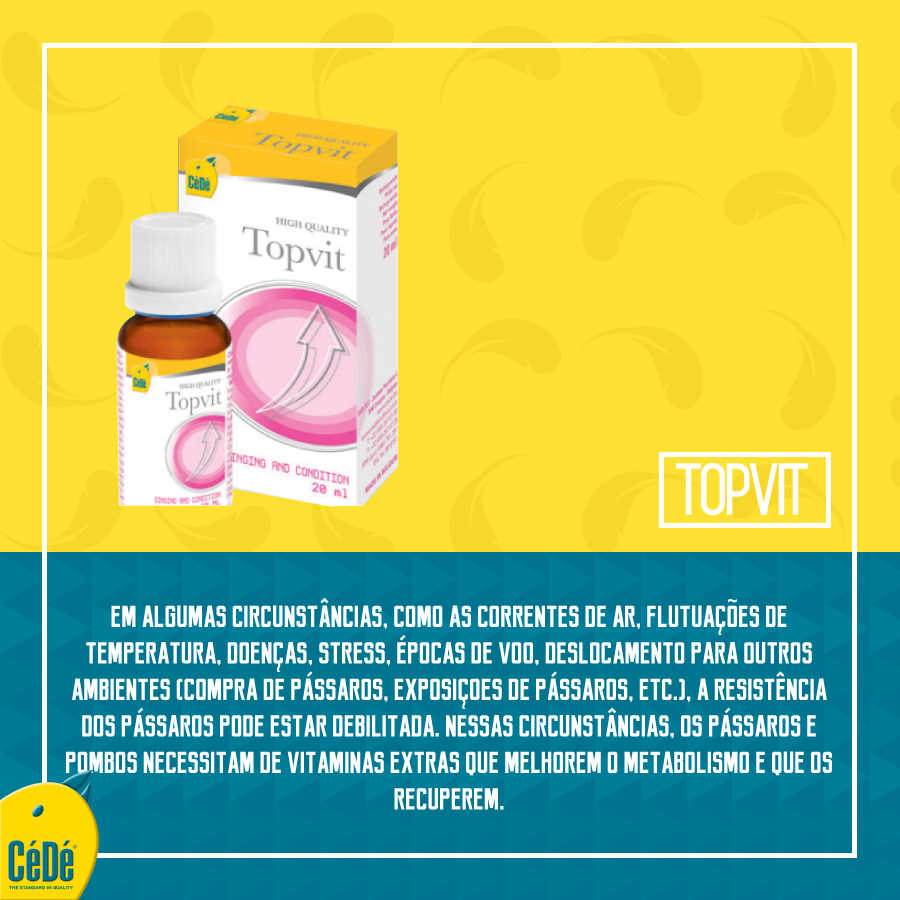 TOP-VIT  (20ml) - Multivitaminico  - CéDé Brasil