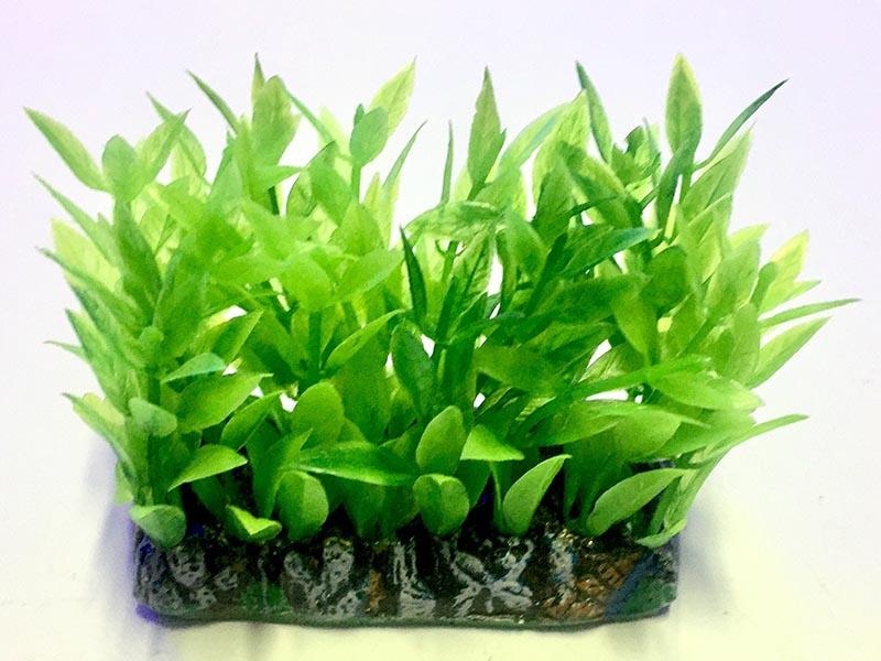 Planta Artificial P/ Aquarios Tapete Alternanthera verde 6cm Soma 071726  - KZ Power
