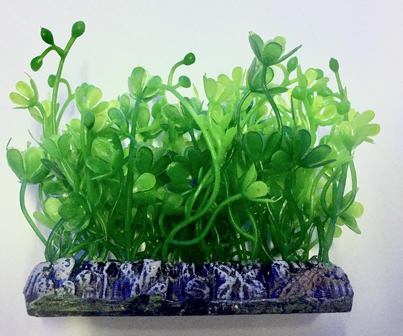 Planta Artificial P/ Aquarios Tapete Micranthemum 6cm Soma 071723  - KZ Power