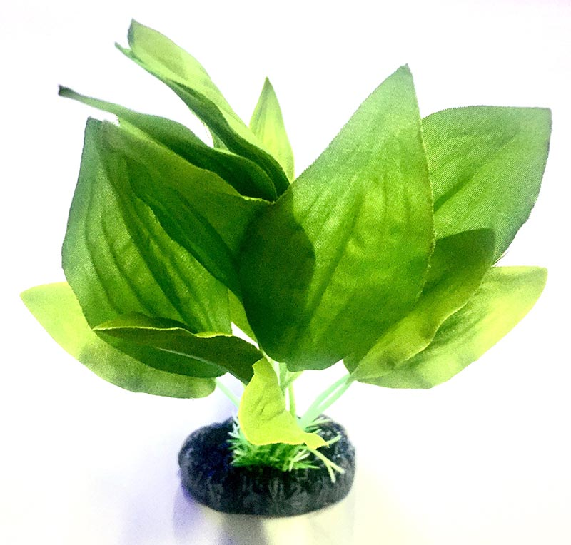 Planta Artificial P/ Aquarios Silk Echinodorus Verde 20cm Soma 064512  - KZ Power