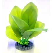 Planta Artificial P/ Aquarios Eva Anubia Cordifolia 13cm Soma 064557