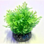 Planta Artificial P/ Aquarios Glossostigma 4cm Soma 071008