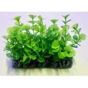 Planta Artificial P/ Aquarios Tapete Bacopa 10cm Soma 071722